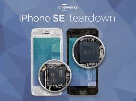 iPhone SE 被拆了,來看看跟 iPhone 6 / 6S 有啥不一樣